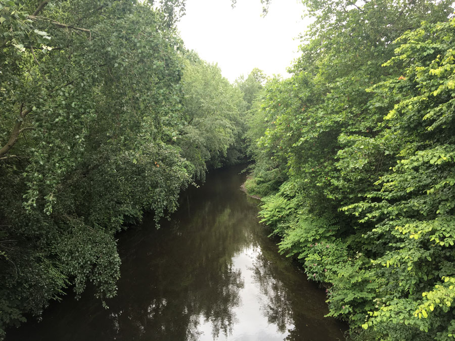 A photograph of a Canal with trees surrounding.